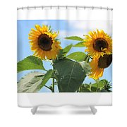 Sunny Flowers Shower Curtain