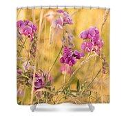Sunny Garden 1 Shower Curtain