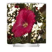 Sunny Garden Mayflower Shower Curtain