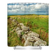 Sunny Meadow Sheep Shower Curtain