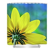 Sunny Outlook Shower Curtain