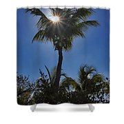 Sunny Palm Shower Curtain