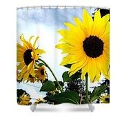 Sunny Slopes Shower Curtain