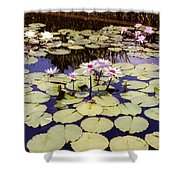 Sunny Waterlilies Shower Curtain