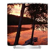 Sunrise And Birch Trees Shower Curtain