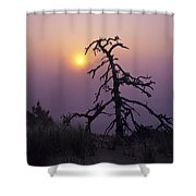 Sunrise And Fog Shower Curtain
