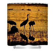Sunrise At The Crane Pools Shower Curtain