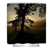 Sunrise Behind Elm Tree Shower Curtain