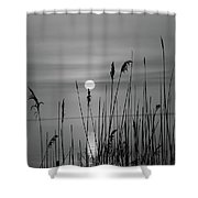 Sunrise Black And White  Shower Curtain