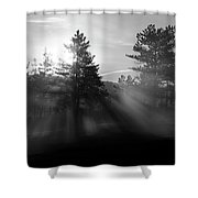 Sunrise Bursting Through Trees And Mist At Palsko Lake Shower Curtain