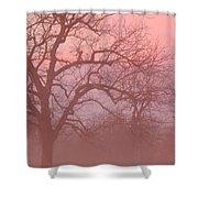 Sunrise Fog Shower Curtain