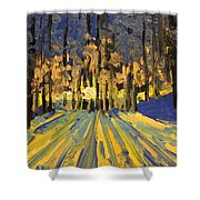 Sunrise Forest Modern Impressionist Landscape Painting  Shower Curtain