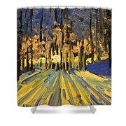 Sunrise Forest Modern Impressionist Landscape Painting  Shower Curtain