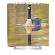 Sunrise Goose Shower Curtain