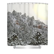 Sunrise In Snowstorm In The Pike National Forest Shower Curtain
