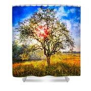 Sunrise Meadow Shower Curtain