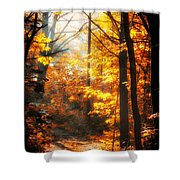 Sunrise Mist Through The Trees Shower Curtain