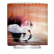 Sunrise On Swan Lake Shower Curtain