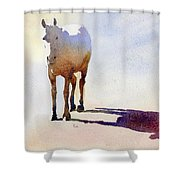 Sunrise On The Circle H Shower Curtain