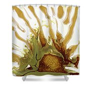 Sunrise On The Desert Playa Shower Curtain