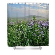 Sunrise Over Foggy Glacial Park Prairie Shower Curtain
