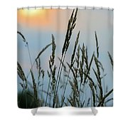 Sunrise Over Grass Shower Curtain