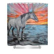 Sunrise Pony Shower Curtain