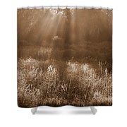Sunrise Sepia Shower Curtain