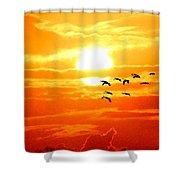 Sunrise / Sunset / Sandhill Cranes Shower Curtain