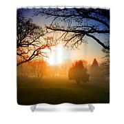 Sunrise Through Trees Shower Curtain