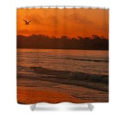 Sunrise With Seagull Shower Curtain