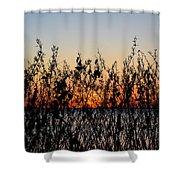 Sunrise2 Shower Curtain