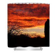 Sunset And Saguaro Shower Curtain