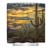 Sunset Approaches - Arizona Sonoran Desert Shower Curtain