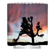Sunset At Joshua Tree 2 Shower Curtain