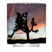 Sunset At Joshua Tree Shower Curtain