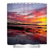 Sunset At Myakka River State Park, Florida Shower Curtain