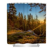 Sunset At Sequoia Shower Curtain
