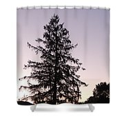 Sunset Behind The Pines Shower Curtain