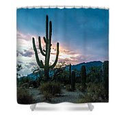 Sunset Beyond The Cacti Shower Curtain