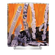 Sunset Birches Shower Curtain