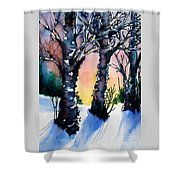 Sunset Birches On The Rise Shower Curtain