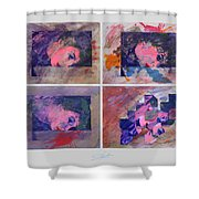 Sunset Boulevard In Reverse Shower Curtain