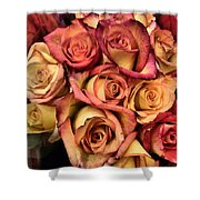 Sunset Colored Roses Shower Curtain