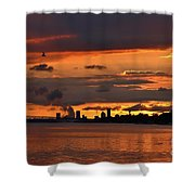 Sunset Flight Of The Tern Shower Curtain
