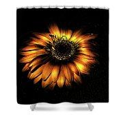 Sunset Flower Shower Curtain