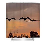 Sunset Fly Over Shower Curtain