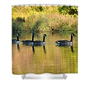 Sunset Goose Shower Curtain