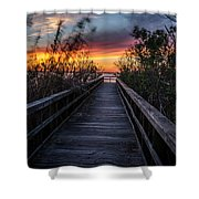Sunset In Meaher Park #102 Shower Curtain