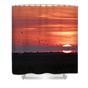Sunset In Sabine Pass Texas Shower Curtain